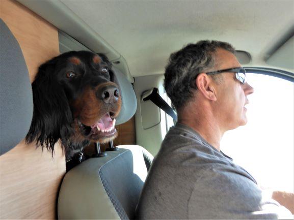 Our co-pilot !