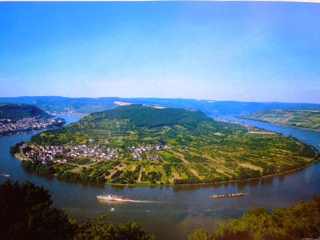 Some stayed in Boppard taking the chair lift to the viewing area (copy photo!)