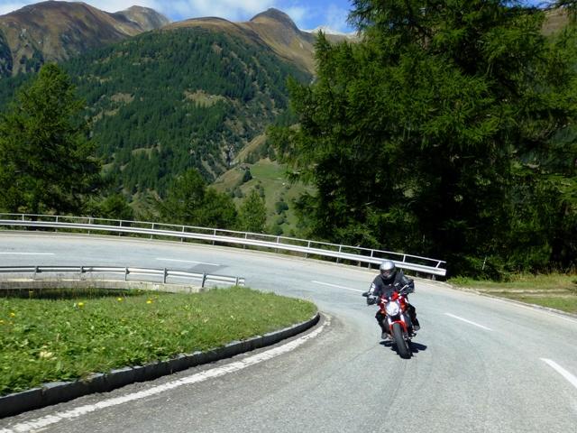 Ducati Dave