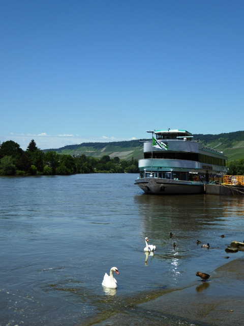 Lunch on the Mosel