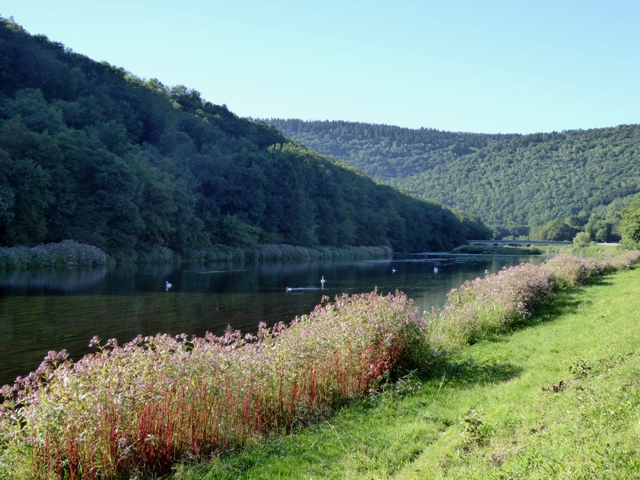 River Semois in the Ardennes