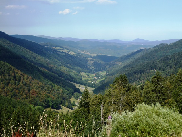 View from the Vosges