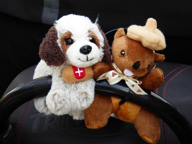 The cutest St Bermard & Marmot