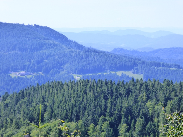 Stop for views of the Black Forest