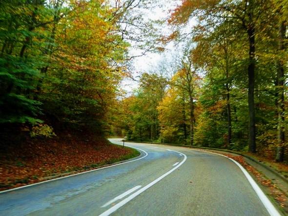 Brilliant Roads