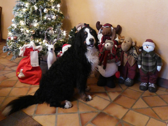 and from Della & friends too!