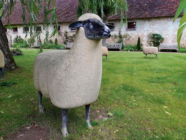 John's missing his sheep in France !